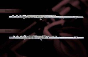 Balade en flûte